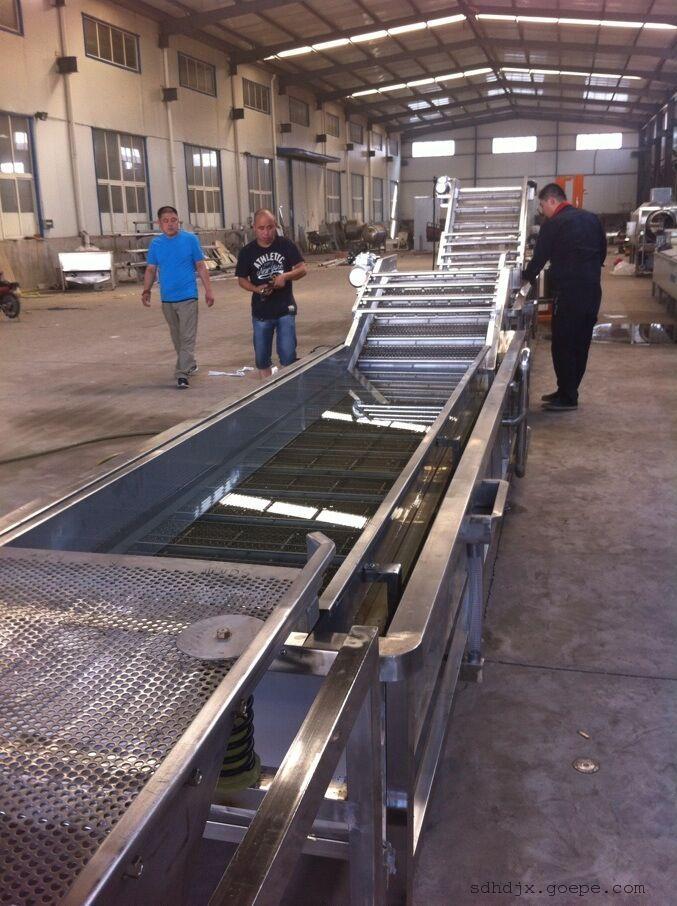 水果清洗机 高效喷淋清洗设备 链板式多功能清洗机天翔生产厂家