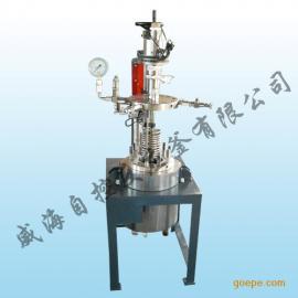 重庆 5l实验室反应釜 高压反应釜 高压釜