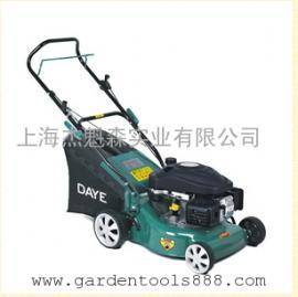 大叶汽油割草机DYM1663Q、大叶割草机厂家、割草机代理