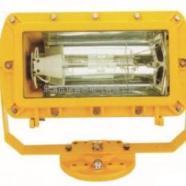 ZBD118-D30/40/50LED防爆泛光灯