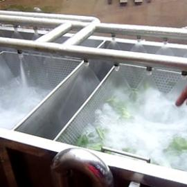 供应餐馆・饭店  蔬菜清洗机 ・方便实用
