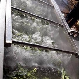 天翔供应优质辣椒清洗机气泡翻滚清洗干净而彻底