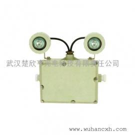 BXW6229节能防爆应急工作灯\应急照明灯