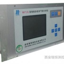 NR710L红外多组份气分析仪