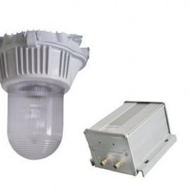 直流应急灯SW7160-100W