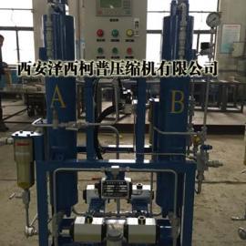 陕西 高压空气干燥机 压力45.0Mpa 高压微热再生吸附式干燥机