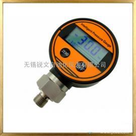 无锡RYB-68型LCD显示数字压力表