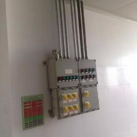 12回路防爆照明配电箱