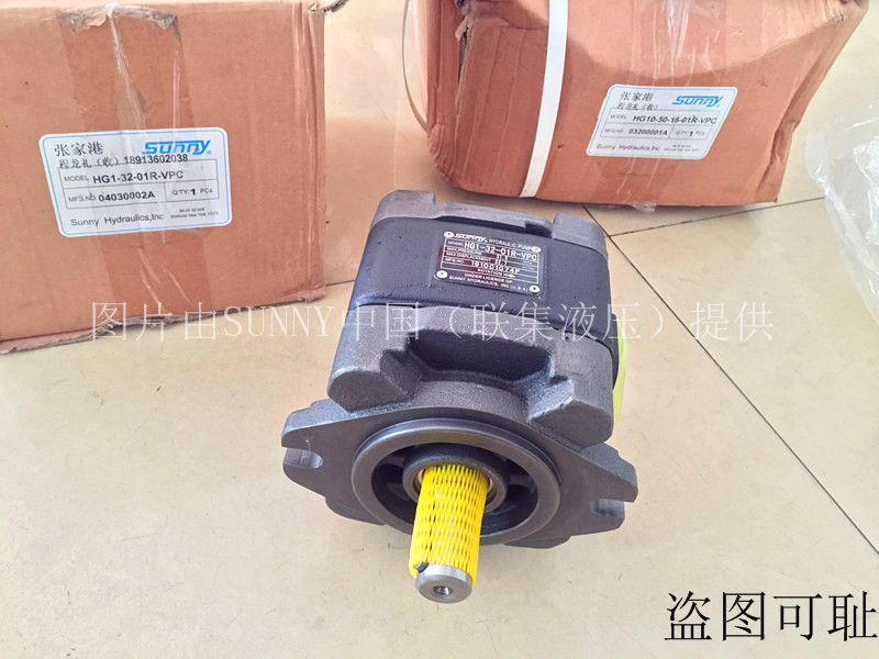 美国SUNNY油泵HG0-20-01R-VPC-G齿轮泵