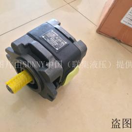 SUNNY泵HG2-125-01R-VPC-G内啮合齿轮泵
