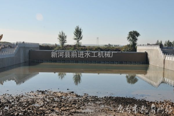 前进生产湖北客户定制优质钢坝闸门