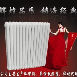 钢制片头二柱散热器GZ206型钢制二柱散热器