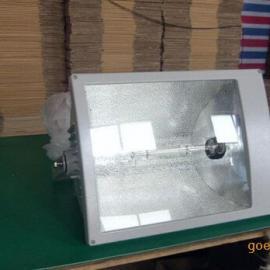 FAT-W防水防尘无极灯|泛光灯、无极灯价格