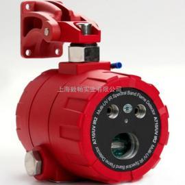 A710/UVIR2紫外红外火焰探测器