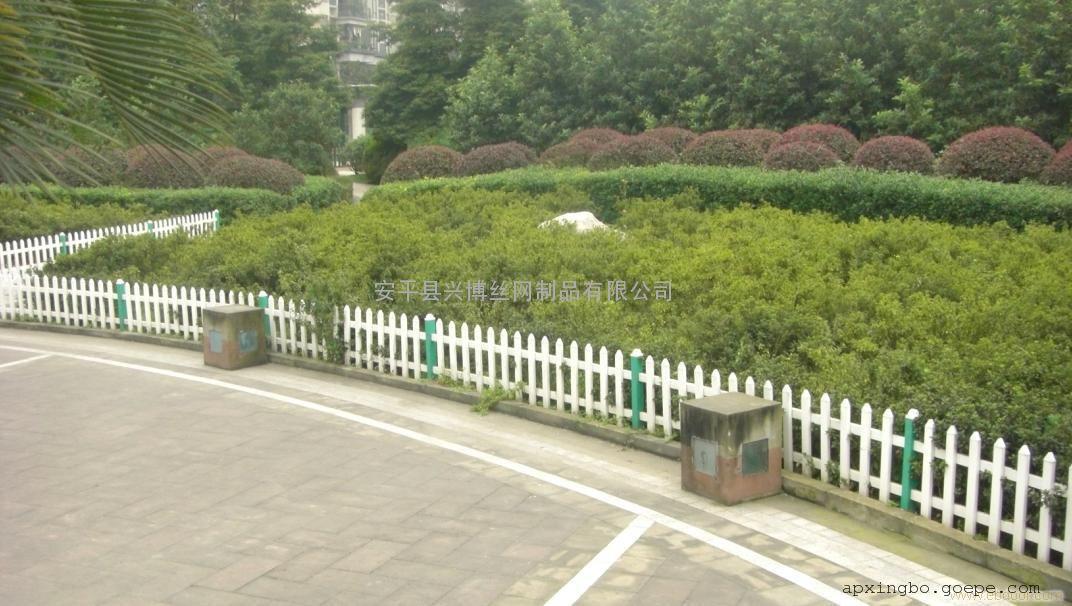 河北城市市政道路绿化隔离带护栏,塑钢围栏