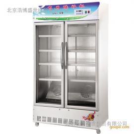 冰之乐SNJ-A单开门全自动数码商用现酿酸奶机