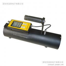 LT-3013辐射剂量率仪