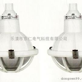 FAD-S固定式高强度气体放电灯