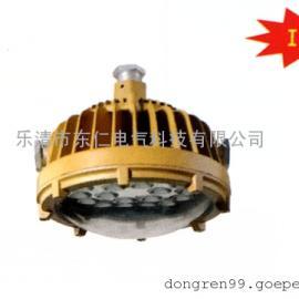 DR-810防爆免维护LED照明灯