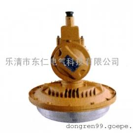 DR-1106免维护节能防爆无极灯