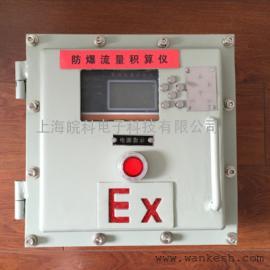 WK防爆流量积算仪