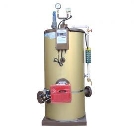 酒�S用200kg/h�能�h保燃�庹羝��l生器