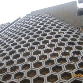 六角护坡砖模具