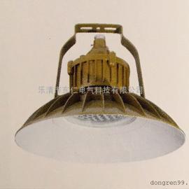 DR-122防爆免维护LED照明灯
