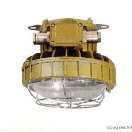 DR-350防爆免维护LED照明灯