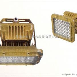 DR-410防爆免维护LED照明灯