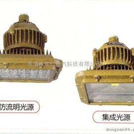 DR-720防爆免维护LED照明灯  仿流明光源 集成光源