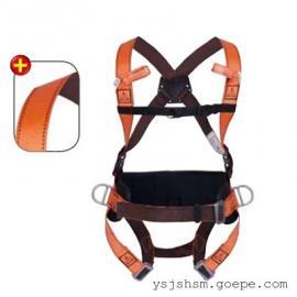 上海市代尔塔501014带定位腰部双挂点安全带