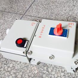BLK52-20A/380V防爆漏电断路器