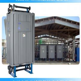 美国GE-EDR频繁倒极电渗析设备2020-6L-3S