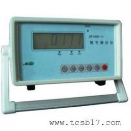 在线式数字压差表,实时显示RS232输出DP1000-2型
