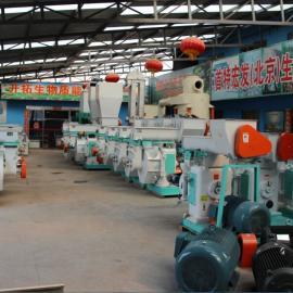 ST木屑颗粒机械设备厂家/规模型/秸秆颗粒机械设备厂家