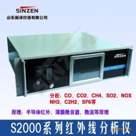 S2000系列二氧化碳CO2分析仪 红外线CO2分析仪