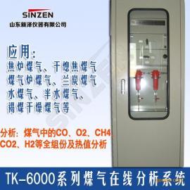 新泽仪器TK-6000型焦炉煤气氧含量在线分析系统价格优惠