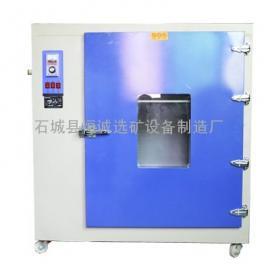 实验室电热恒温鼓风干燥箱