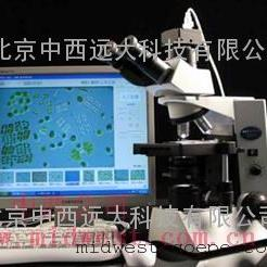 藻类智能鉴定计数仪 型号:ZHX/SS-200