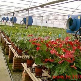 蔬菜,花卉大棚热水型暖风机