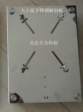 大小鼠两用解剖台 不锈钢HL/JPT-2.2 规格:300*200mm