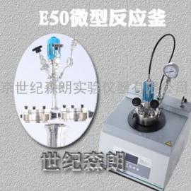 上海世纪森朗微型反应釜