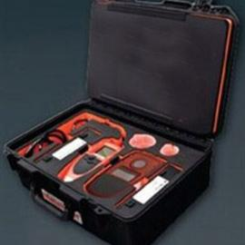 便携式重金属测定仪DS