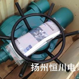 DZW阀门电动装置,江苏阀门电动装置,扬州阀门电动装置