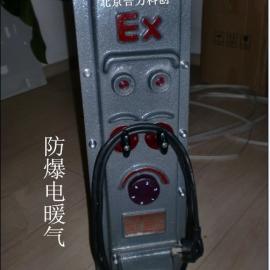 防爆油汀电暖气 3KW 《13片》