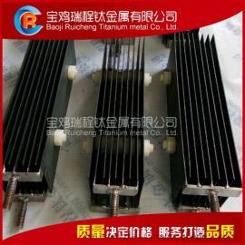 厂家直销污水处理用钛阳极 钛电极组订制