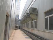 天津冷风机厂家 工业大中小型冷气机 排风机排风零售