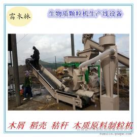 环保型木屑颗粒机 8MM颗粒成型机 颗粒机厂家 颗粒设备