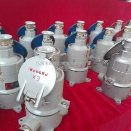 耐用防爆型插接装置
